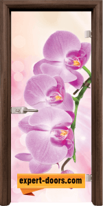 Print G 13 3 Pink T 1
