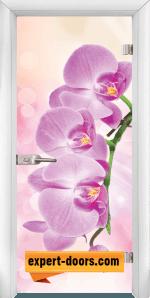 Print G 13 3 Pink W 1